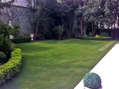 Réfection du jardin